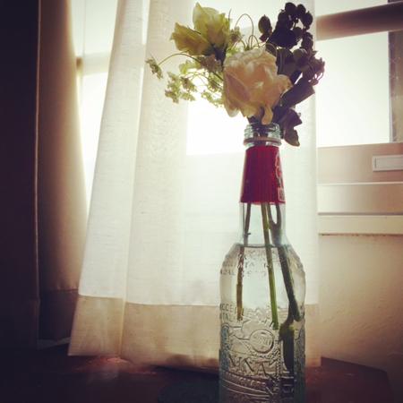 テリーの花1