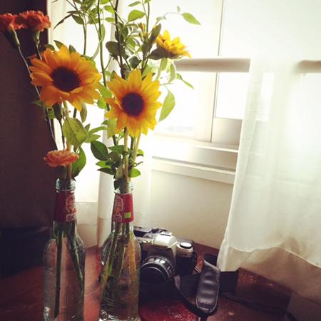テリーの花2